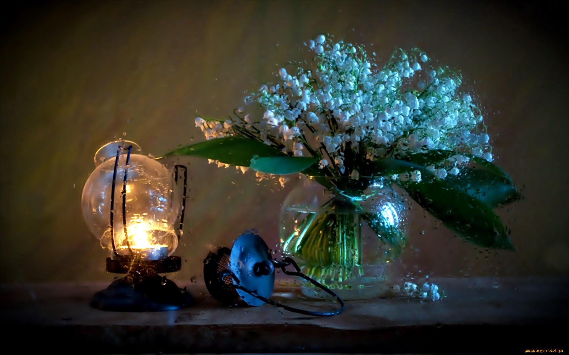 красивые картинки весенние цветы в ночи времена изменились